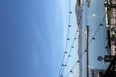12 Terrence Narinesingh Photography at Fishermans Wharf San Francisco California