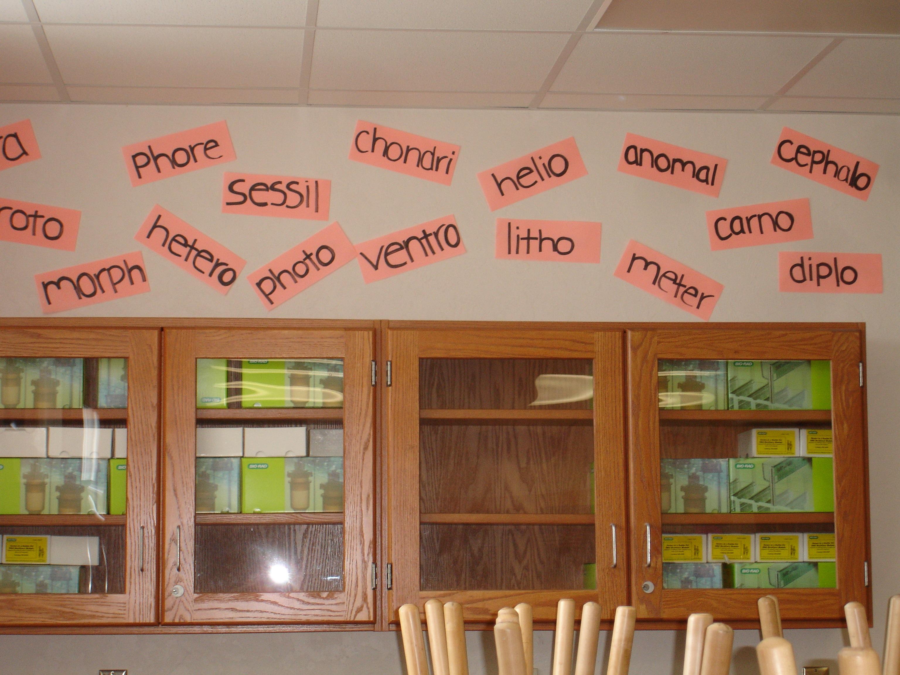 124 Word Wall at John I. Leonard High School
